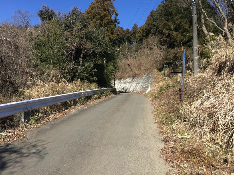 minenoyakushi10.jpg
