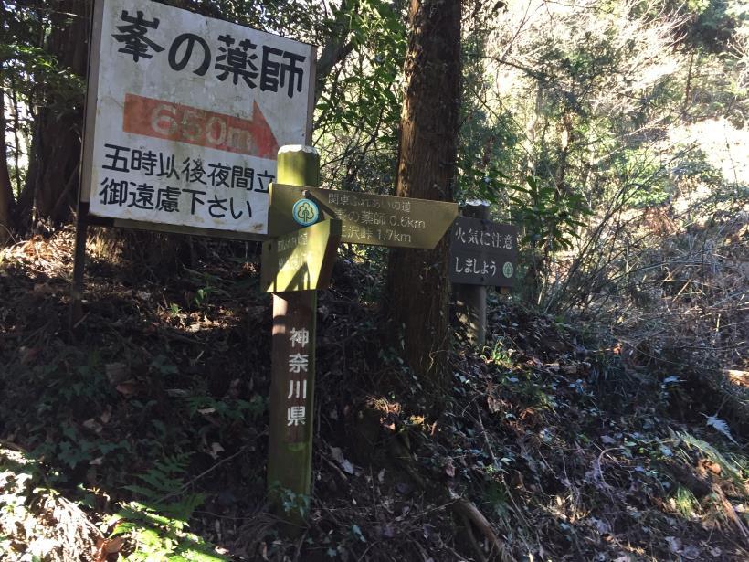 minenoyakushi24.jpg