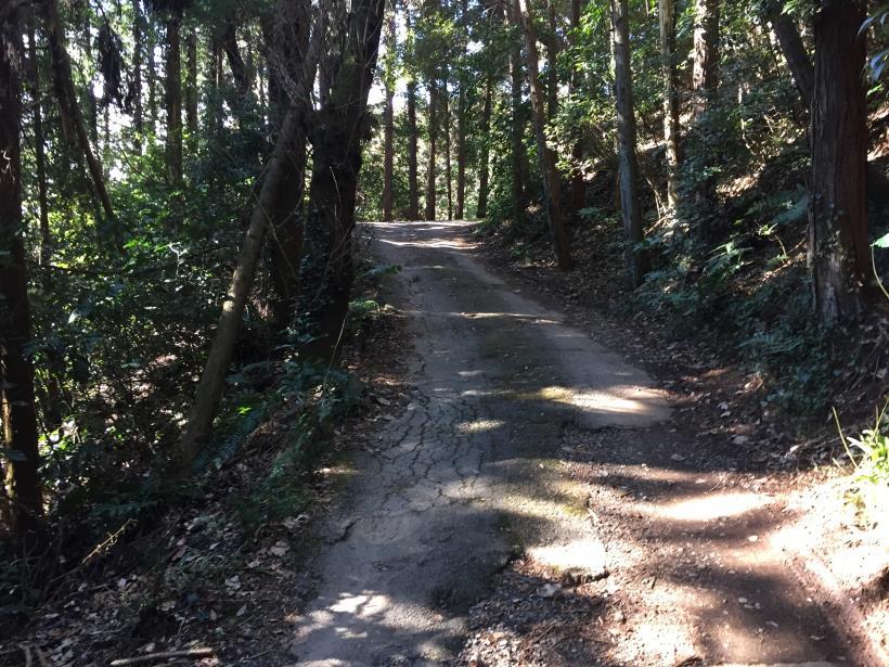 minenoyakushi33.jpg