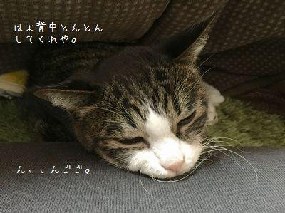 モノ申す銀②