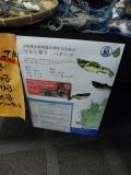 JR能代駅 ハタハタつるし飾り4