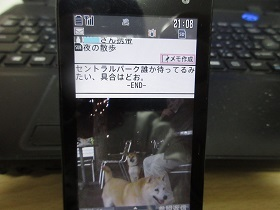 IMG_14996.jpg
