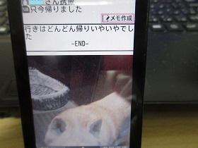 IMG_15004.jpg