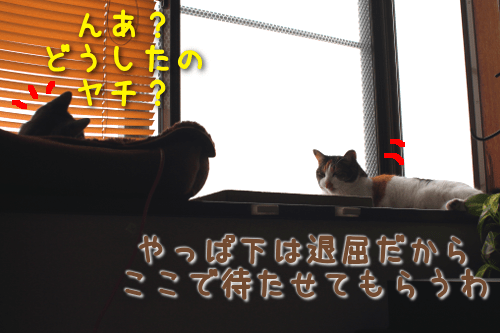 201810251719161f8.png