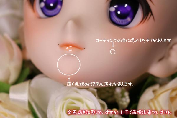 DDH06 _1222 3