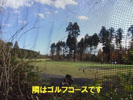 20161202132103b4c.jpg