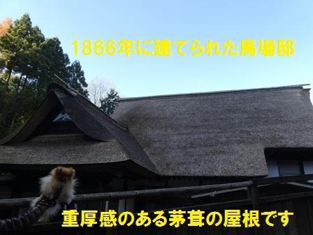 181127-6