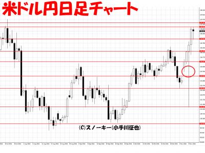 20161113【リアル】ループ・イフダン検証米ドル円日足