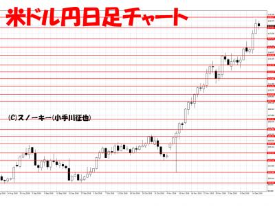 20161217米ドル円日足