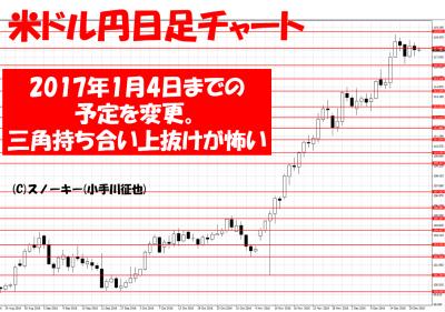 20161223トラッキングトレード検証米ドル円日足