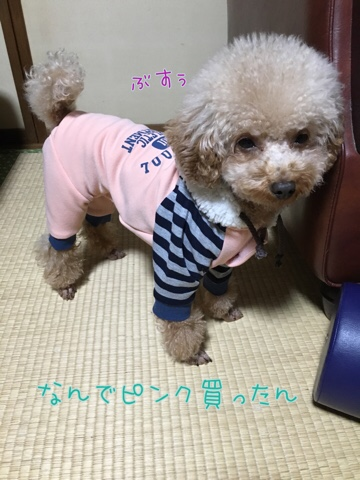 fc2blog_20161209220045c26.jpg