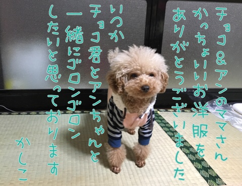 fc2blog_20161218201638caa.jpg