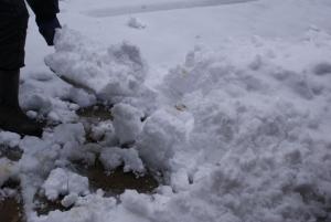 170115雪かき