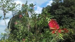 181025金宝樹
