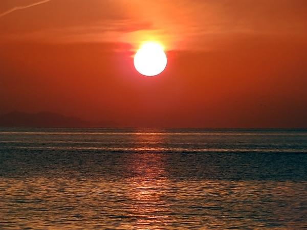 追っかけてきそうな夕陽