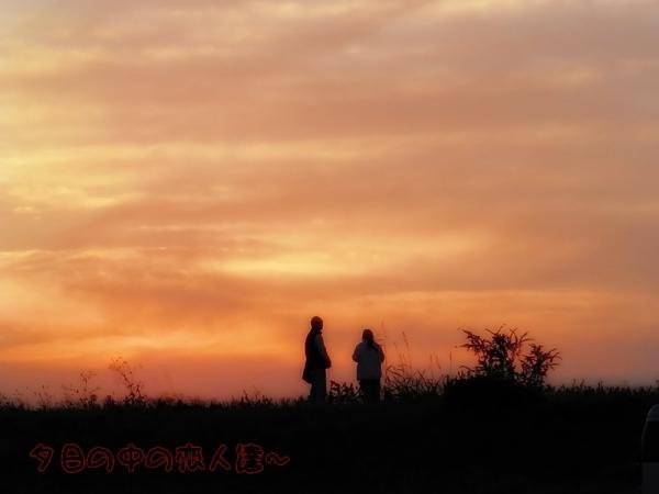 夕陽の中の恋人達~