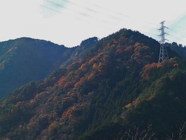 山もきれい