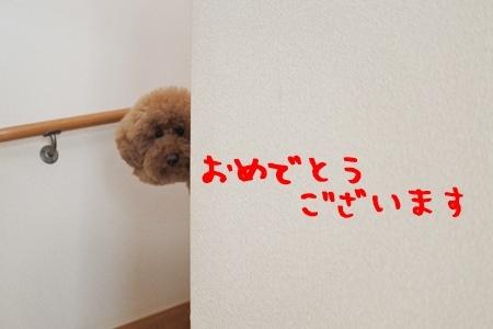 DSC_7659.jpg