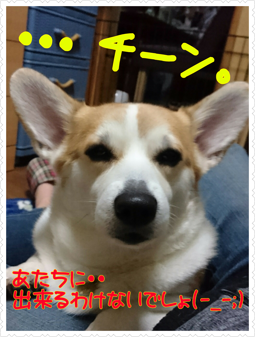 20161205003146713.png