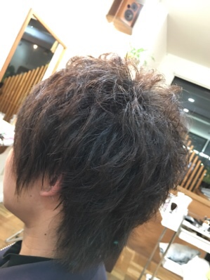 fc2blog_201612161414058d9.jpg