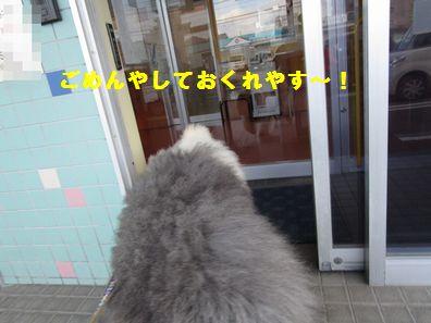 IMG_0605.jpg