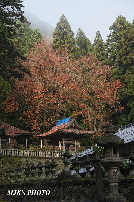 kannamiji6498.jpg