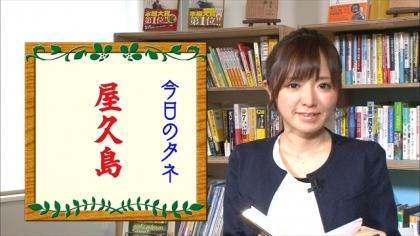 161121朝ダネ 紺野あさ美 (5)