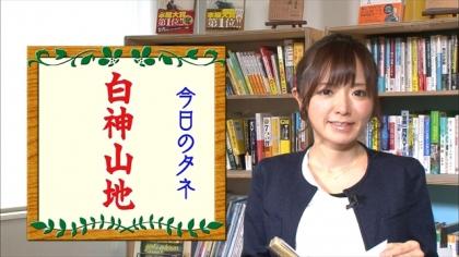 161124朝ダネ 白神山地 紺野あさ美 (4)