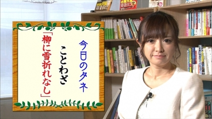 170105朝ダネ 柳に雪折れなし 紺野あさ美 (5)