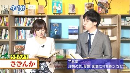 170113朝ダネ さざんか 紺野あさ美 (3)