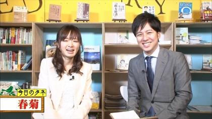 170209朝ダネ 春菊 紺野あさ美 (1)