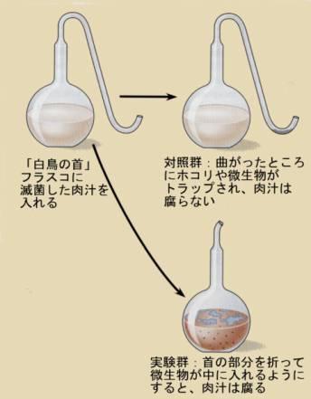 pastour_experiment[1]