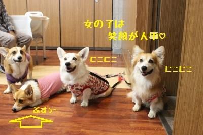 4IMG_3166.jpg