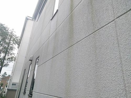 大掃除は家の外も一緒に~外壁のセルフメンテナンス~