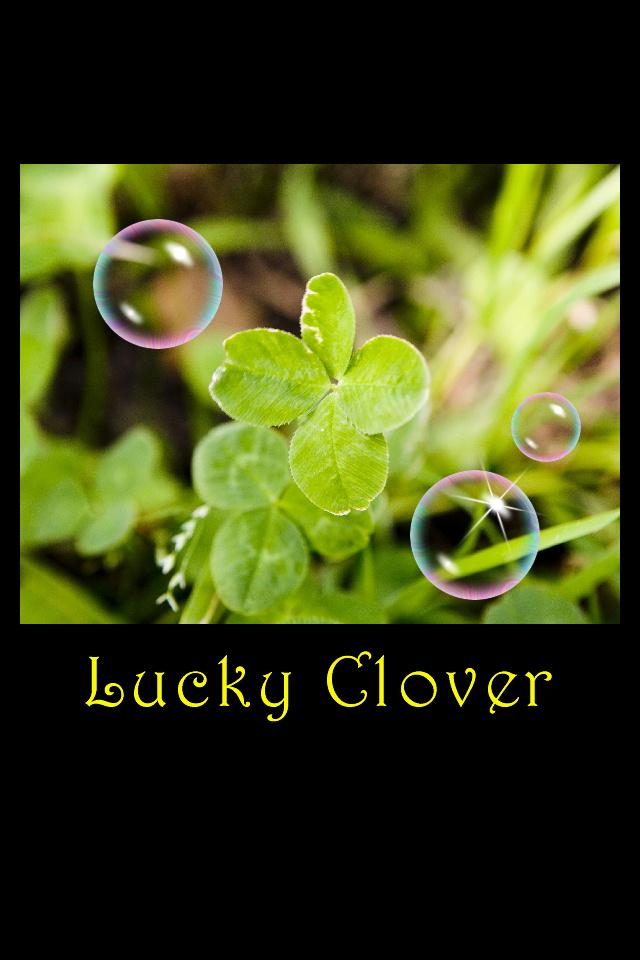 ラッキークローバー