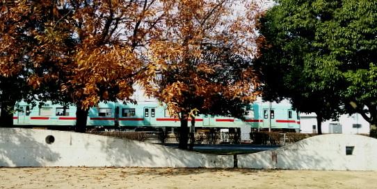 紅葉と西鉄電車