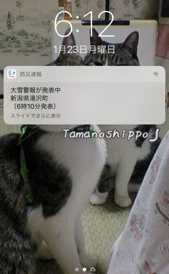 大雪警報アラーム(Yahoo防災速報)in湯沢