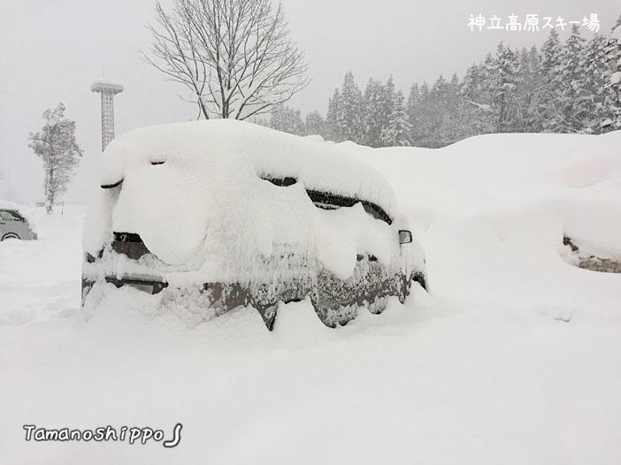 大雪で埋まりそうになった車(神立高原スキー場)