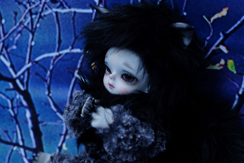 WITHDOLL、Happy Ending Story - Wolf Rudy、泣き虫チビ狼のルディが、神様にお願い事をしています
