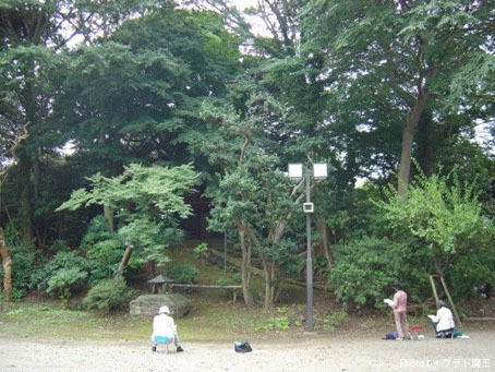Namidaishi_21.jpg