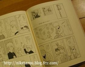 nikero644.jpg