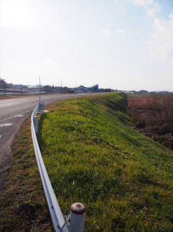 中条堤【埼玉県熊谷市日向】