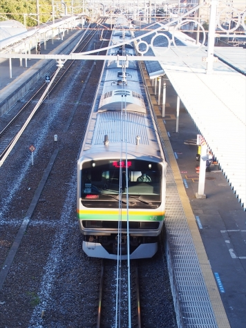 JR 高崎線 E231系 電車 近郊タイプ