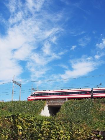 東武鐵道 伊勢崎線 200系 特急 りょうもう15号