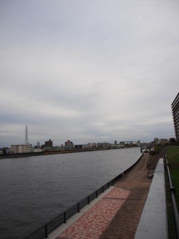 隅田川左岸からの風景【足立小台より】