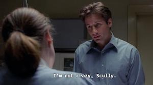 僕は狂っていないぞスカリー