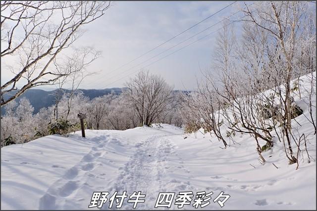 s-TG3-20161221-100731-0.jpg