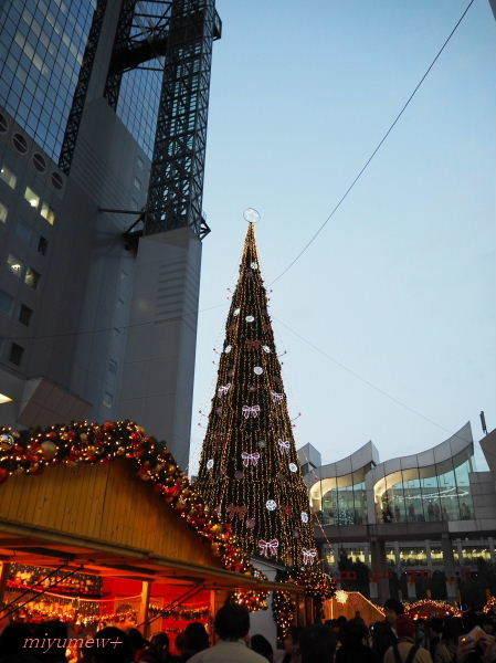 クリスマスツリー15