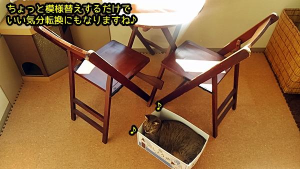 猫 コルクマット 猫ハウス