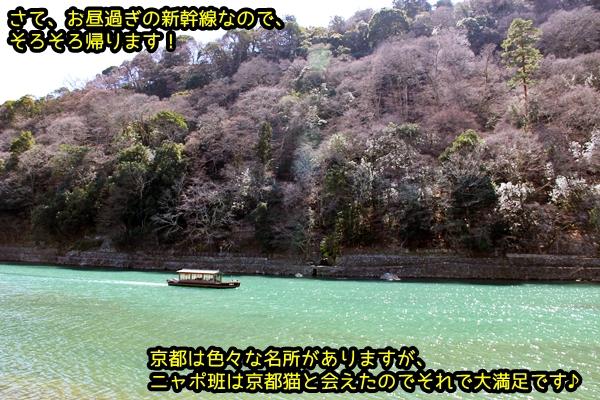 ニャポ旅33 早春の京都散策